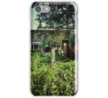 Lonely Horse iPhone Case/Skin