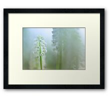 Can you see the light... Framed Print
