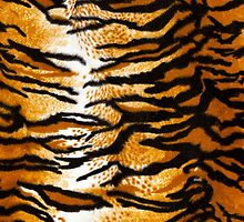 Tiger Print Background by Antonio Gravante