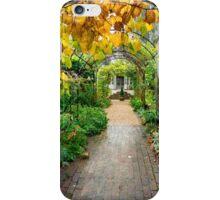 Autumn walkway iPhone Case/Skin