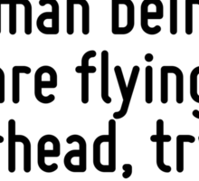 As I write, highly civilized human beings are flying overhead, trying to kill me. Sticker