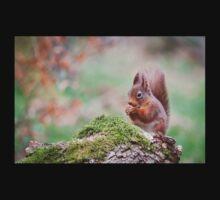 Red Squirrel One Piece - Short Sleeve