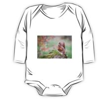 Red Squirrel One Piece - Long Sleeve