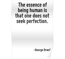 The essence of being human is that one does not seek perfection. Poster