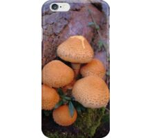 Autumn Mushrooms iPhone Case/Skin