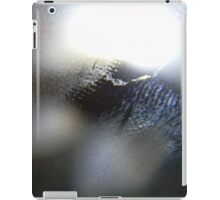 scratch screen  iPad Case/Skin