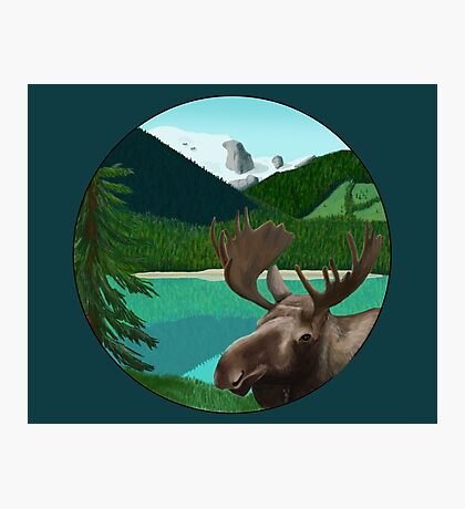 Moose in the wild Photographic Print