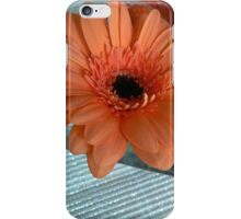 dao of nutrition iPhone Case/Skin