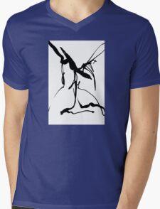 SJCrown Fine Art    sjcrown.artspan.com Mens V-Neck T-Shirt