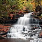 It Feels Like Fall At Onondaga Falls by Gene Walls