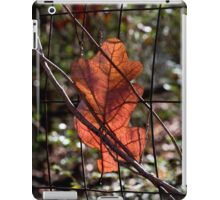 Visitor from the Sky iPad Case/Skin
