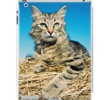 Tigga iPad Case/Skin