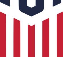 Team USA Olympics 4 Soccer Sticker