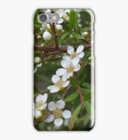 Australian native white blossoms in the bush iPhone Case/Skin