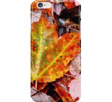 Leaf Litter III iPhone Case/Skin