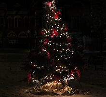 The Christmas Tree by AC-Photography