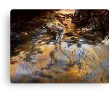 Falcon River Healing  Canvas Print