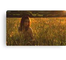 the meadow at dusk Canvas Print