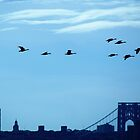 Birds over New York City by Alberto  DeJesus