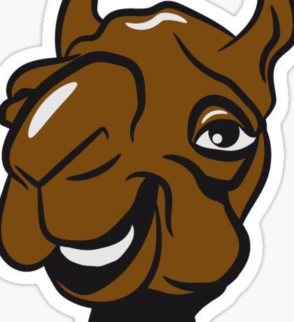 Kamel witzig lachen  Sticker