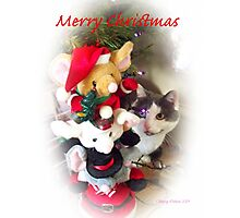 tifaany merry christmas Photographic Print