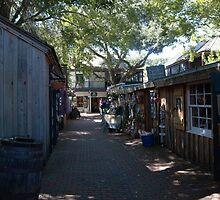 St. George Street, St Augustine by DebAnn57