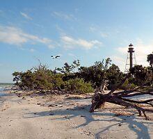 Lighthouse Beach by Rosalie Scanlon