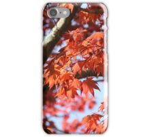 Japanese Red Maple iPhone Case/Skin