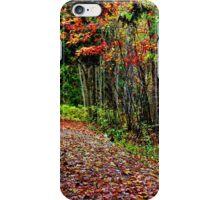 A Leaf Littered Trail iPhone Case/Skin