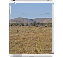 Kangaroos on the plains iPad Case/Skin