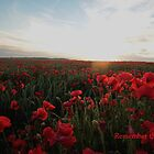 Remember the Fallen by Murray Breingan