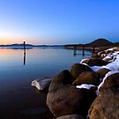 Evening on the Shore of Tahoe by Barbara  Brown