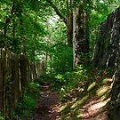 Bro Garmon, Conwy, Wales by fotosic