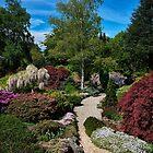 Merry Garth Garden - Mt Wilson by Ian English