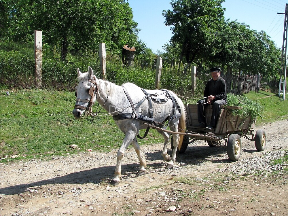 Hay Ho on the Way Home in Romania by Dennis Melling