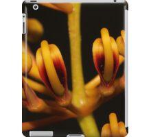 Grevillea robusta iPad Case/Skin