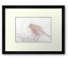 Stay, little cheerful Robin! Framed Print