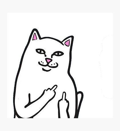 Fk You Cat Photographic Print