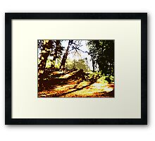 CARPET OF AUTUMN LEAVES Framed Print