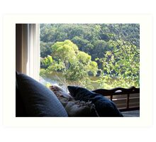 View from the couch Art Print