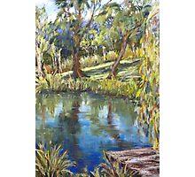 Jenny's pond Photographic Print