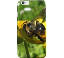 Sip of Nectar iPhone Case/Skin