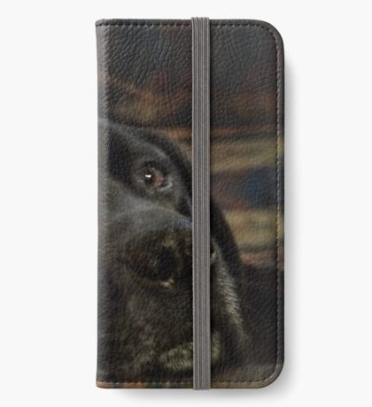 Larry iPhone Wallet