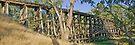 Pyalong Trestle by mspfoto