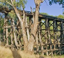 Pyalong Trestle by mspfoto