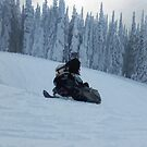 Snowmobiling Fool  - Snowmobiler by NaturePrints