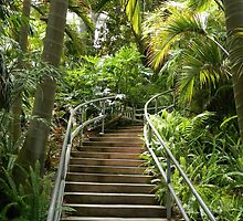 Tropical Stairway by debidabble
