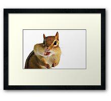 Cheerful Chippie Framed Print