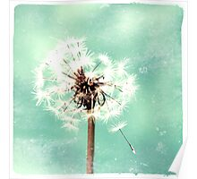 Washed Out Dandelion in Green Poster
