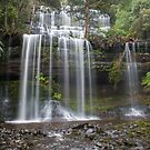 Russell Falls by Andrew Durick